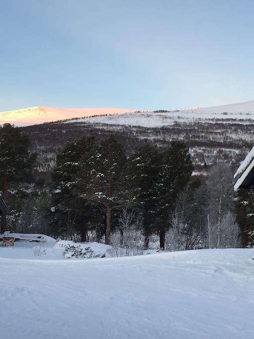 Utsikt mot fjellheimen