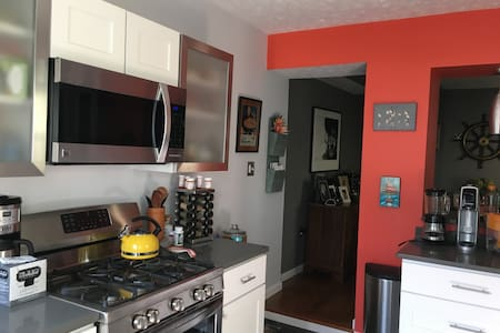 Cute and Federal Hill Row Home with Two Cats
