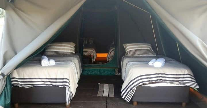 Permanent furnished family Tent 1