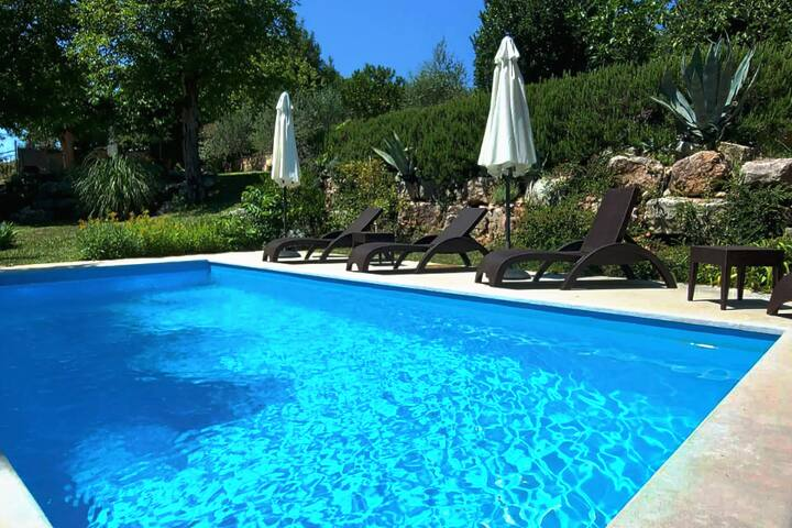Stone house in Istria with pool Katarina & Luka