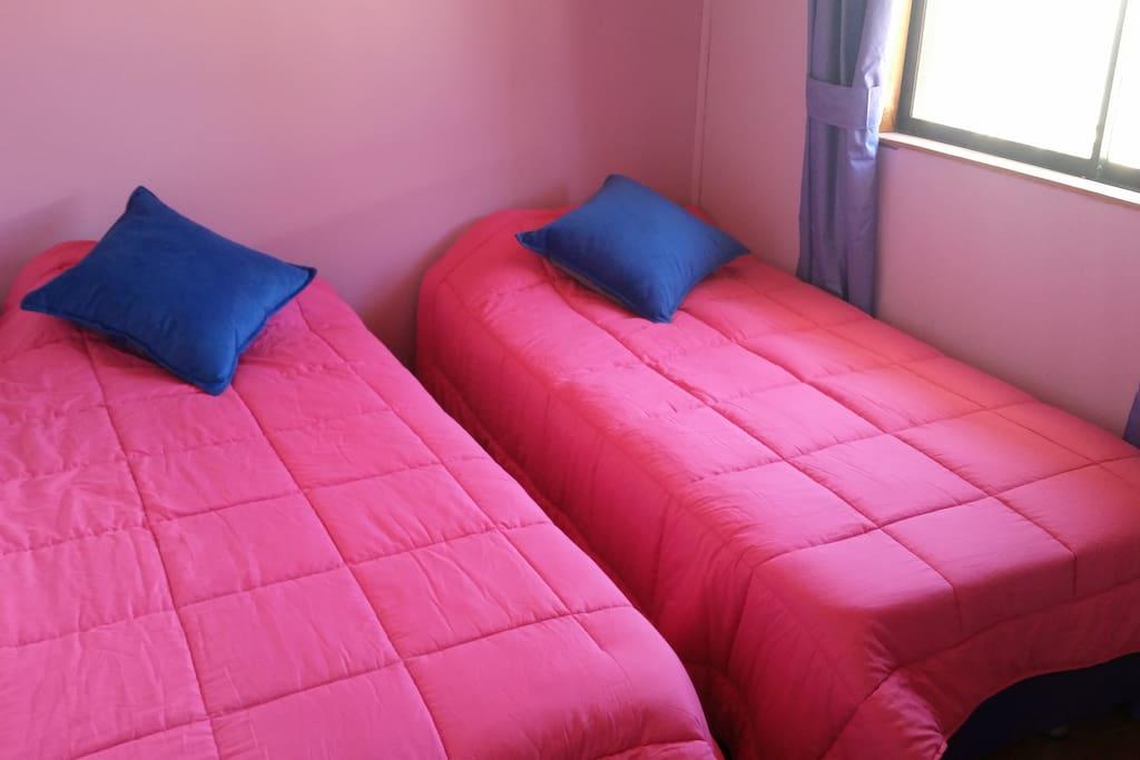 Pieza 2 camas individuales y armario