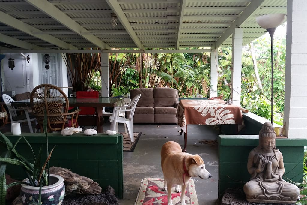 Outdoor living space surrounded by jungle smack in the middle of town.