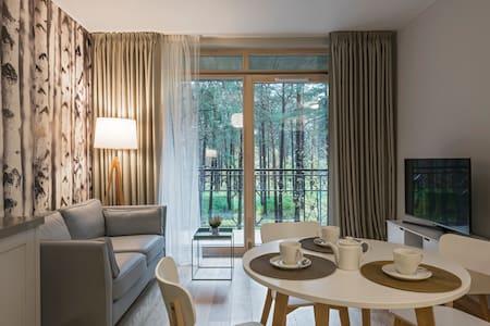 Wellspring Apartment (1 bedroom, 44 sq.m) - 德鲁斯基宁凯 (Druskininkai)