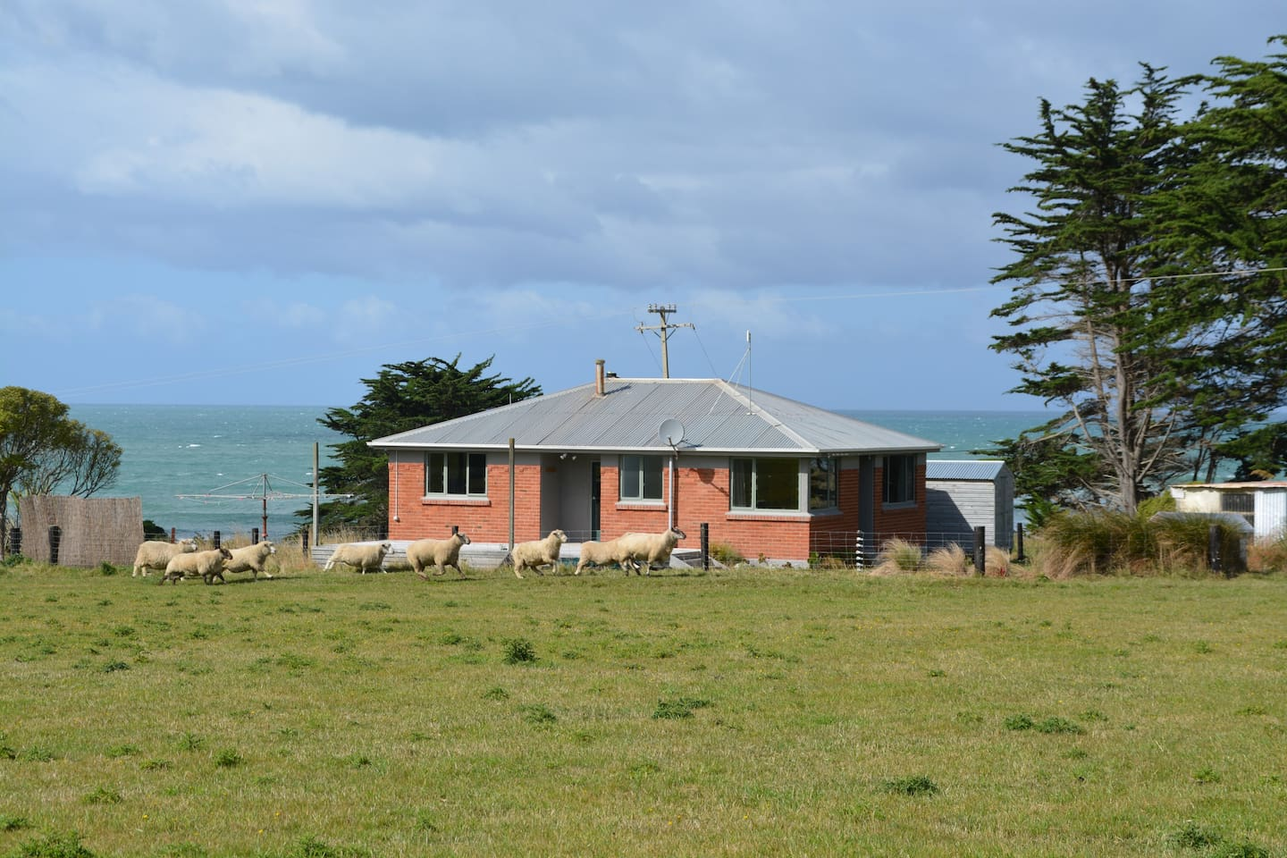 Coombe Hay Cottage, located on a working sheep and beef farm in the south of the South Island, NZ
