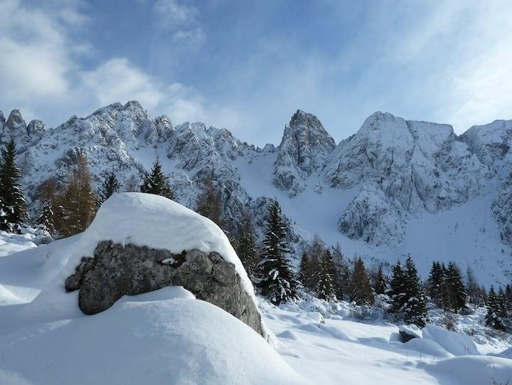 Casa Alpi Schilpario, loft Rododendro