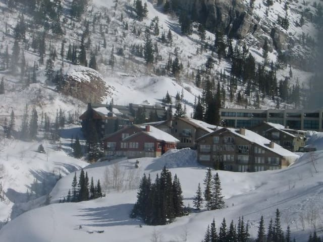 Superior Point Alta/Snowbird Condo - Alta - Apartment