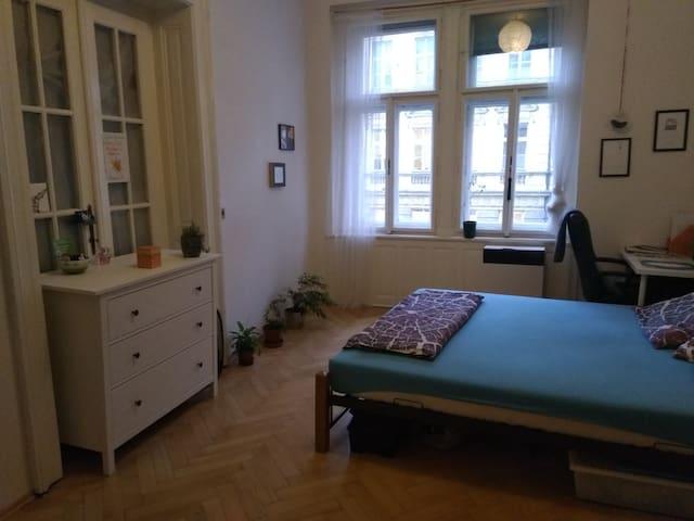 Private room in flat near park+centre in Vinohrady