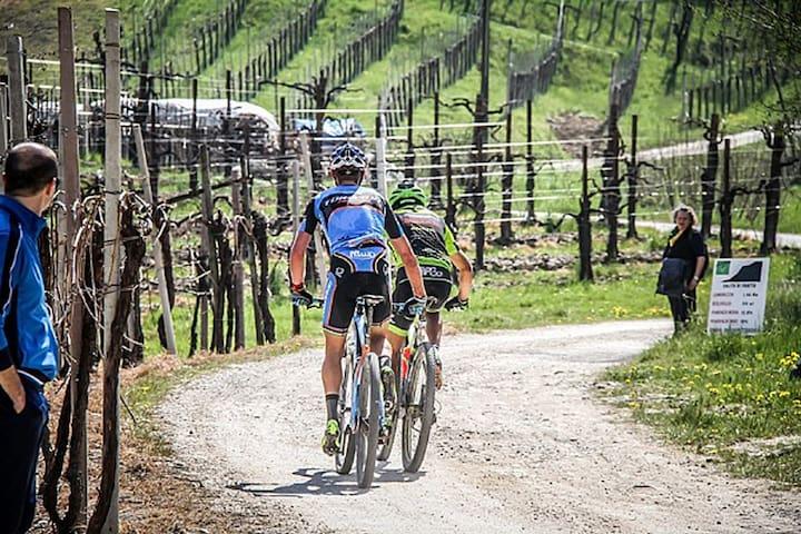Casa sulle colline del Prosecco. Food and Bike! - Combai