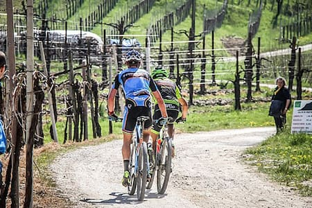 Casa sulle colline del Prosecco. Food and Bike! - Combai - บ้าน