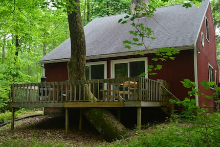 Secluded Waterfront Cabin on Sleepy Creek - Berkeley Springs