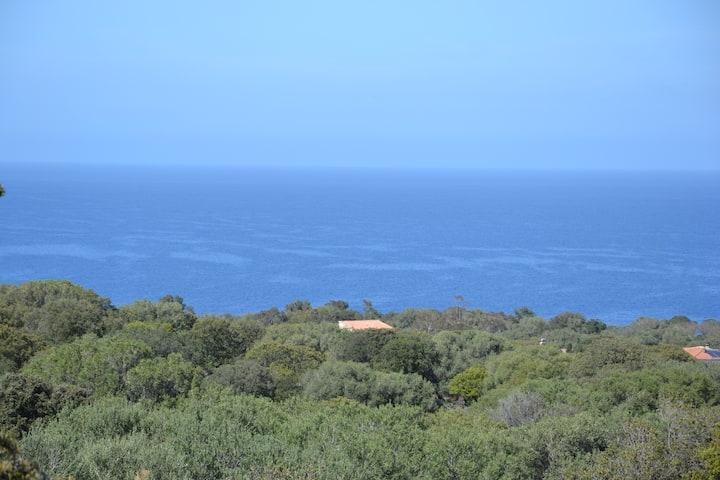 Villa surplombant la mer avec piscine en Balagne
