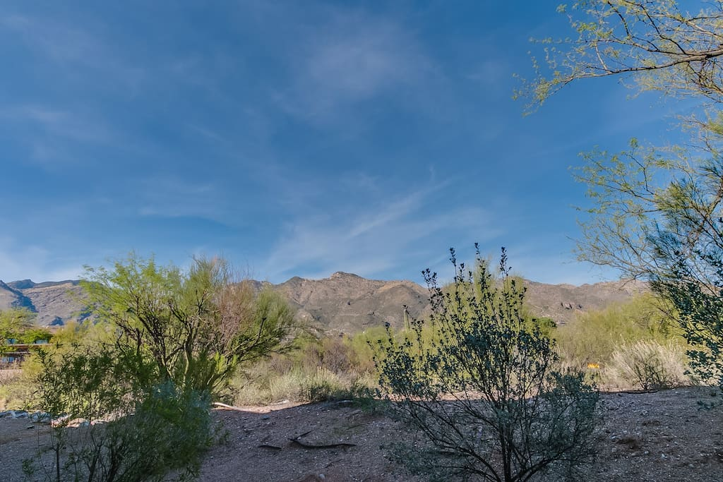 This is the beautiful view of the Catalina mountains from our patio.