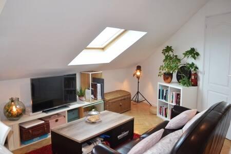 charmant appartement en centre ville - Achères - 公寓