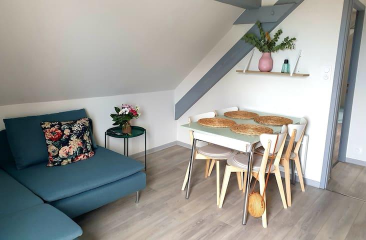 Appartement près Colmar, clim,24/24, wifi, parking
