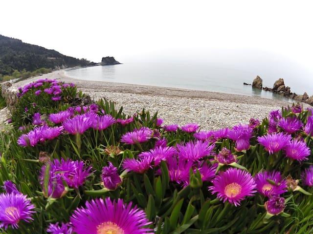 The Gem of Potami Beach