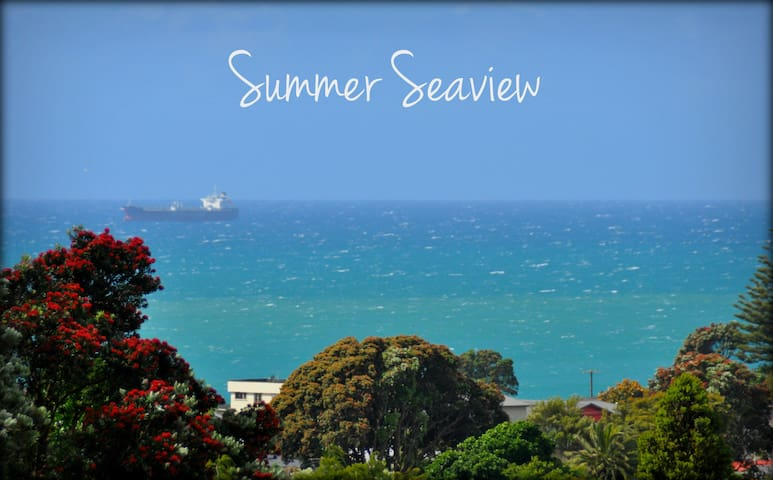 Brilliant Summer Seaview from Driveway
