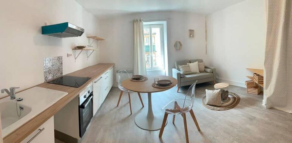 Cosy appartement T2 rénové très bien situé