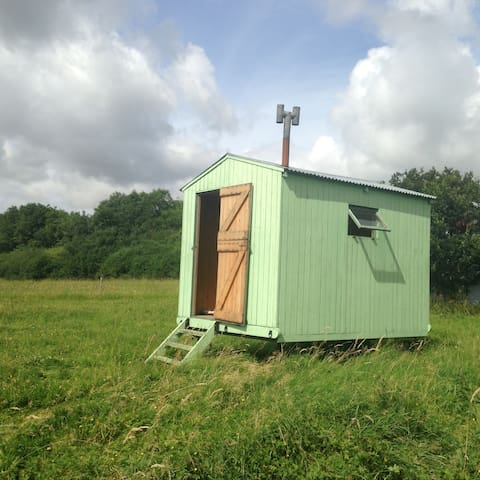 Blueberry Shepherds Huts (The Blueberry Hut) - Maidwell - Overig