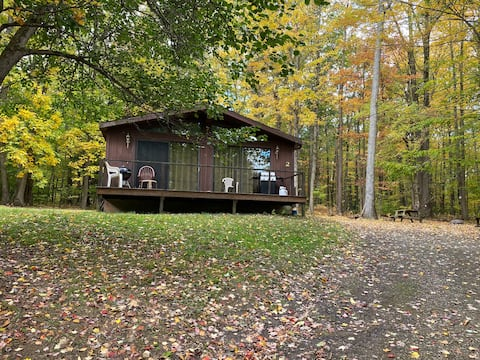 3 bedroom Rustic Cabin #2 near Kinzua Reservoir