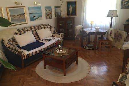 Villa(House) ROSES (for 6 people) (R1) - ノヴァリャ(Novalja)