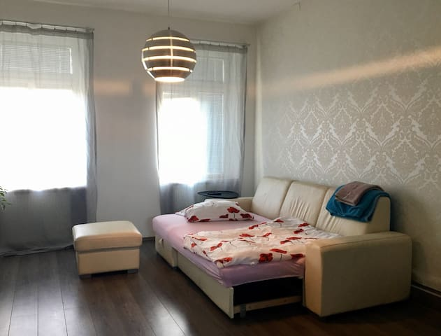 White Apartment in a green garden (separate room) - 布爾諾 - 公寓