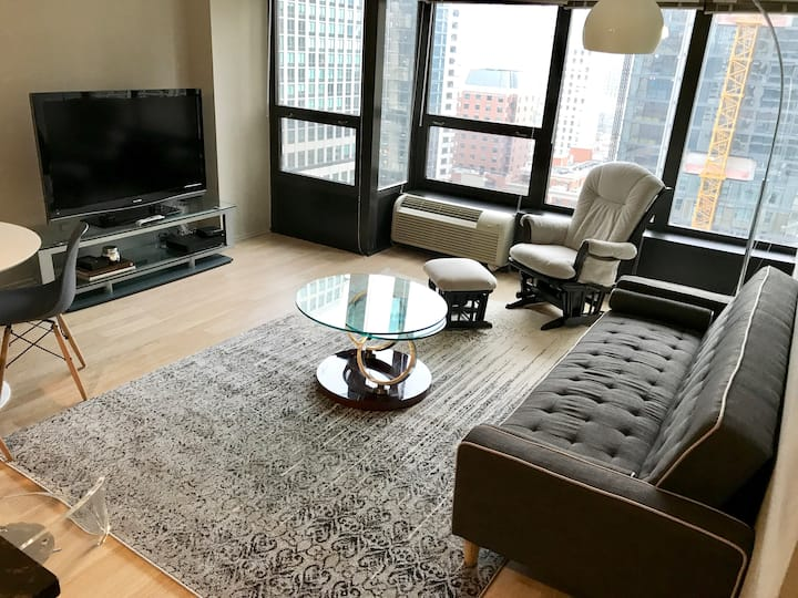 Spacious 1BR apt 2 blocks from Michigan Ave