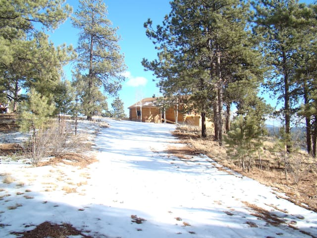 35 Acre Mountain Cabin Property - Florissant - Cabin