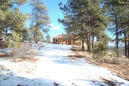 35 Acre Mountain Cabin Property - Florissant