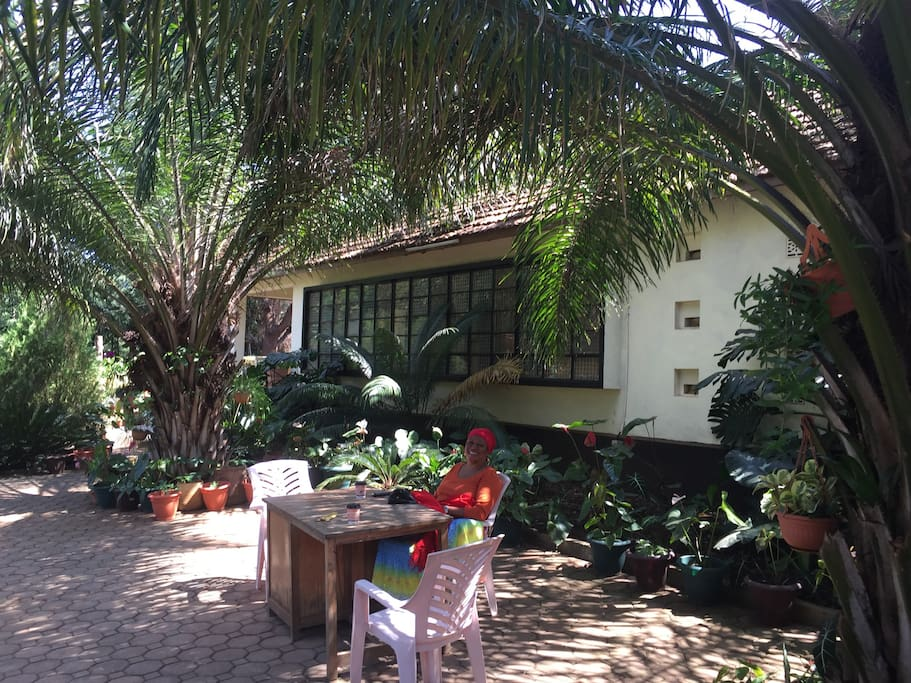 Beautiful patio amidst Mama Kangwa's garden!