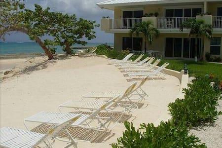 Grape Tree Beachfront Luxury villa. - West Bay, West Bay, KY