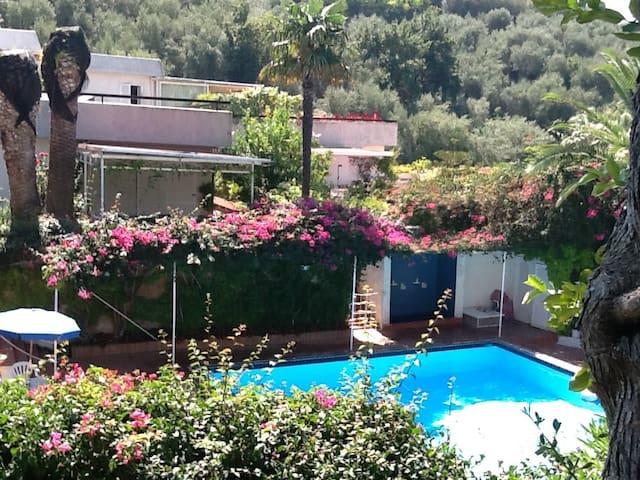 The swimming pool1 (15 June- 15 Sept)