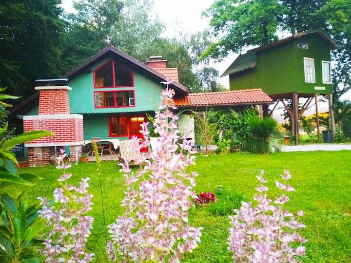 Сказочный деревянный дом и дом из дерева Рамона