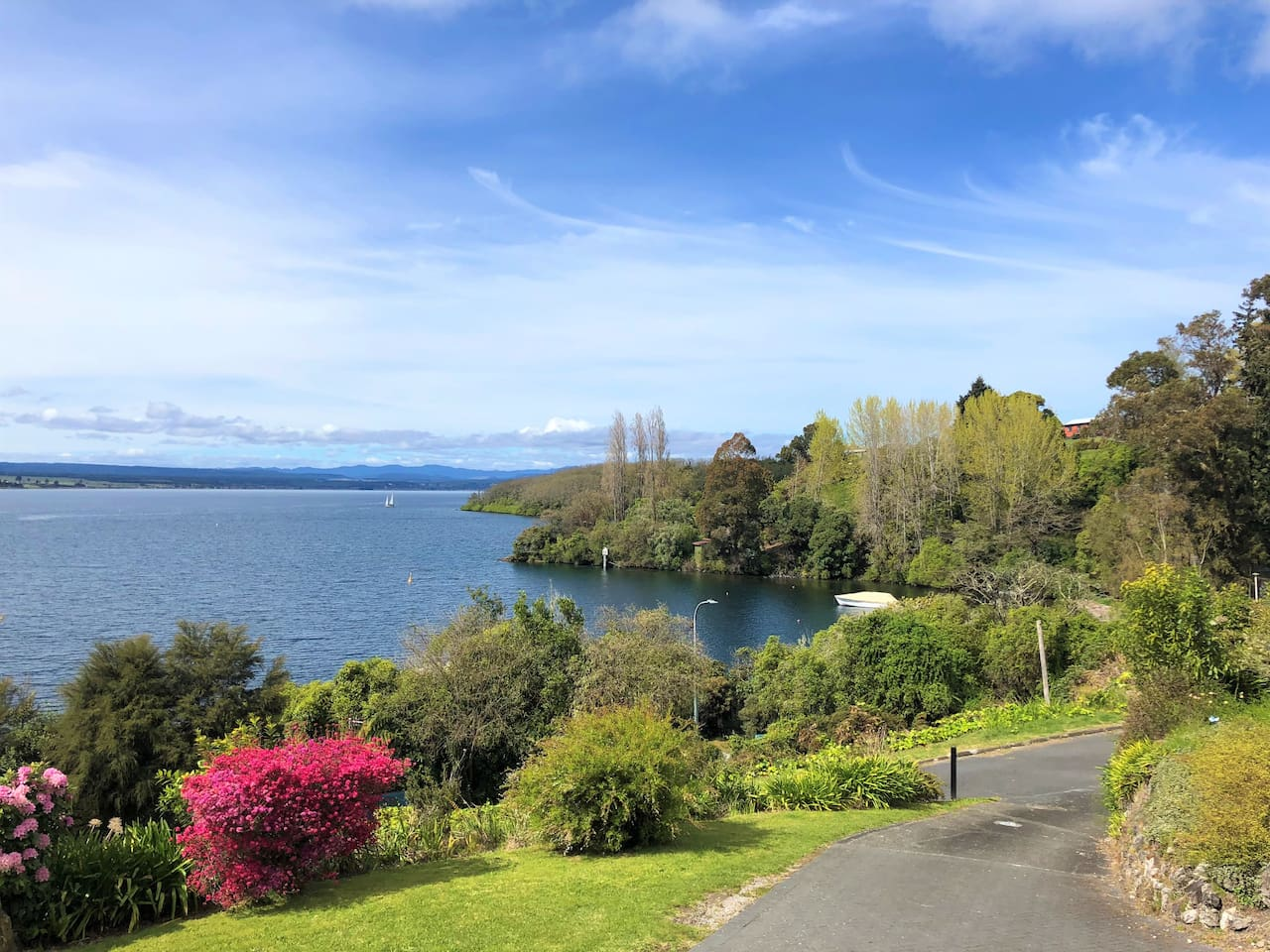 Walk down the driveway and cross the street to dip your toes in the lake! Acacia Bay is a lovely spot to swim