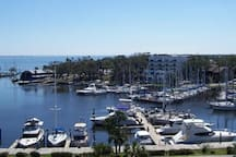 Melbourne Harbor - breathtaking views!