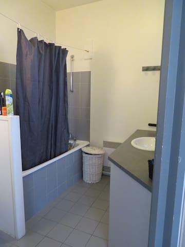 Salle de bain avec baignoire / WC