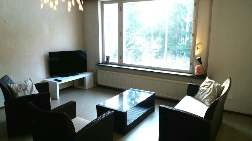 House close to airport 10km - Vantaa - Dom