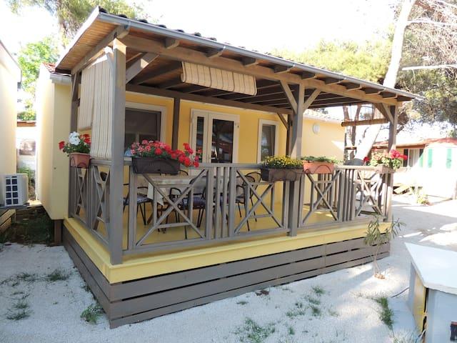 Mobile home Zadar,  Dalmacija Camp Privlaka - Privlaka - Casa