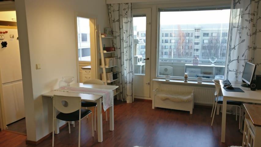 Nice apartment close to Lahti center