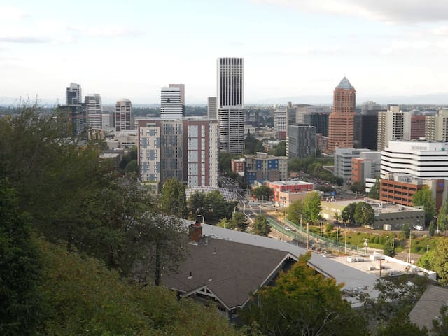 Fantastic View Apartment above Downtown Portland
