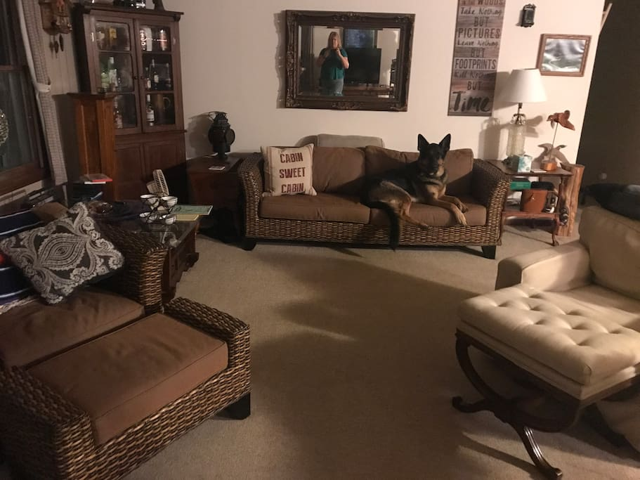 Living room - dog not included.