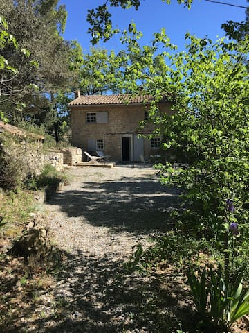 Food, wine and hikes in Verdon