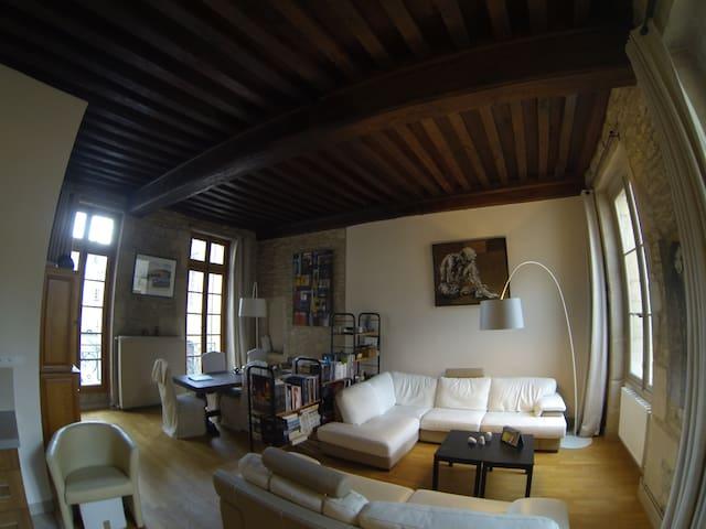 Magnifique appartement en plein coeur de Dijon - Dijon - Appartement