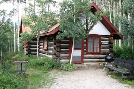 WW cabin on Black Cloud Creek - Twin Lakes