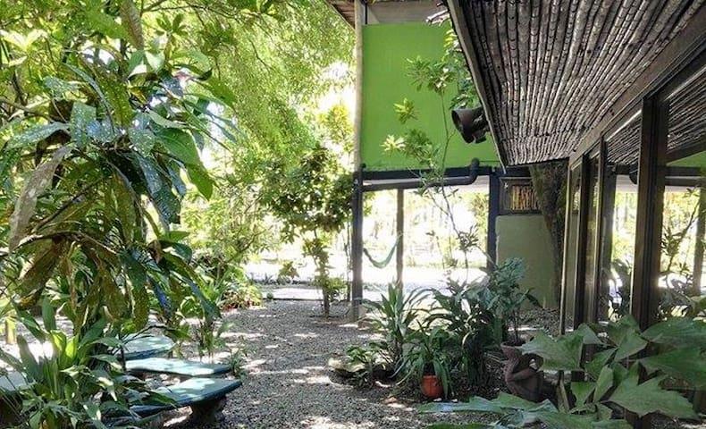 Seaside Guesthouse, Playa Matapalo, Sleeps up to 7