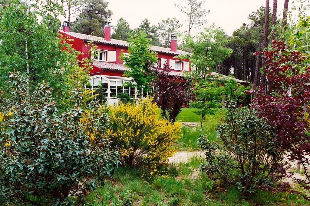 Casa y jardín / House with garden