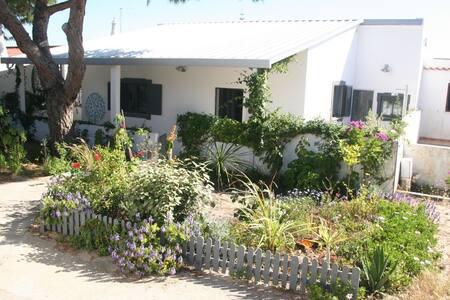 Lovely House on Armona Island!