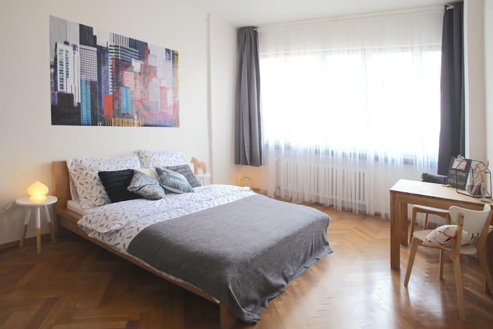Sunny functionalist apartment with large windows