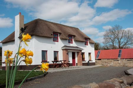 Self-catering cottage - Belturbet - House