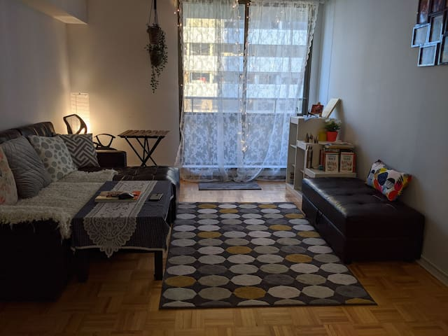Cozy 1 bedroom apartment in Downtown steps frm TTC
