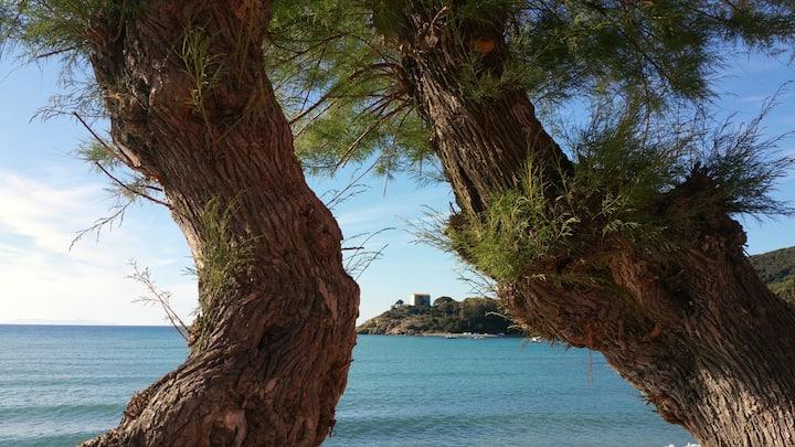 Villetta Vacanze all'Isola d'Elba